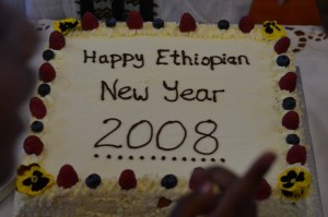 "[Best_Wordpress_Gallery id=""1"" gal_title=""Ethiopian Community In Ireland""]"